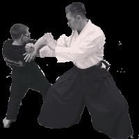 Musu Ryu o Hintergrund